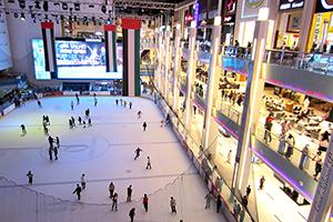 Dubai Ice Rink 1