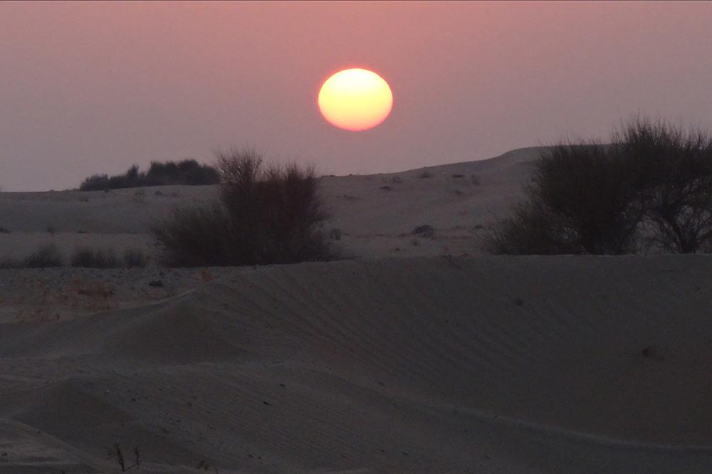 Dubai Wüstensafari 5